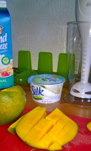 Isn't this a nice photo of all the goodies I used to make frozen goodies?